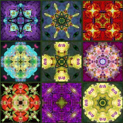 Mandala Collection No 7