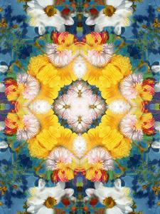 Mandala Ornament from Flower Photographs by Alaya Gadeh