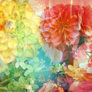 Photographic Layer Work from Flowers by Alaya Gadeh