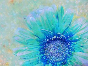 Photographic Layer Work of a Gerber Daisy with Textureand Floral Ornaments in Blue and Green Tones by Alaya Gadeh