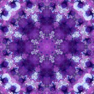 Photographic Mandala Ornament in Purple Tones by Alaya Gadeh