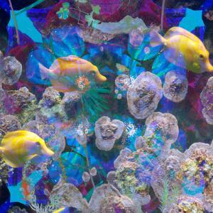 Photomontage from Fish and Flowers Mandala by Alaya Gadeh