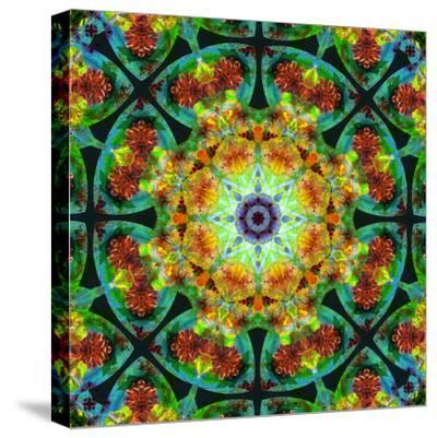 Photomontage of Flowers in a Symmetrical Ornament, Mandala
