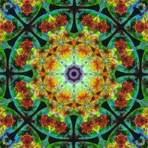 Photomontage of Flowers in a Symmetrical Ornament, Mandala by Alaya Gadeh
