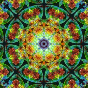 Photomontage of Flowers in a Symmetrical Ornament, Mandala by Alaya Gadeh