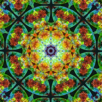 Photomontage of Flowers in a Symmetrical Ornament, Mandala