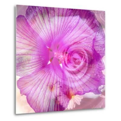 Photomontage of Two Blossoms in Pink Ones