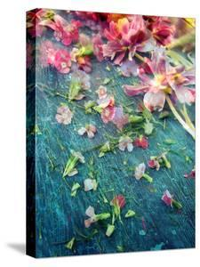 Poetic Layer Work from Flowers by Alaya Gadeh