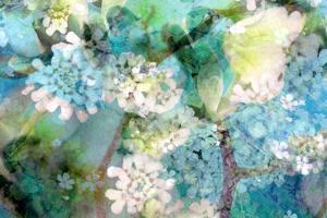 Poetic Photographic Layer Work from White and Blue Flowers with Textures by Alaya Gadeh