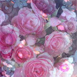 Rose Blossom with Other Flowers by Alaya Gadeh