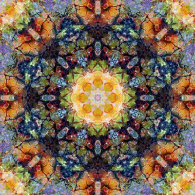 Sun Blossom Mandala