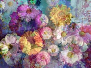 Translucent Multicolor Blossoms by Alaya Gadeh