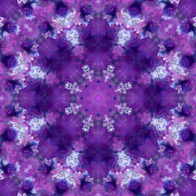 Vilet Blossom Mandala No 4