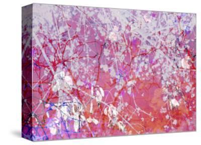 Violet Orange Abstract