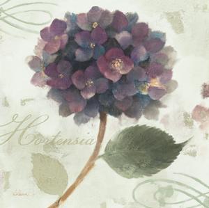 Abundant Hydrangea II Blue Green by Albena Hristova