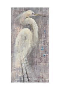 Coastal Egret I Legs by Albena Hristova