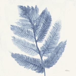 Forest Ferns I Blue by Albena Hristova