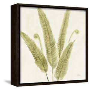 Forest Ferns II by Albena Hristova