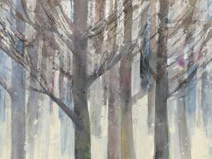 Forest Light by Albena Hristova