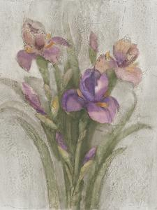 Purple Iris Garden on Grey by Albena Hristova