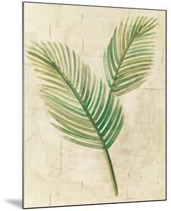 Sago Palm Leaves Neutral Crop by Albena Hristova