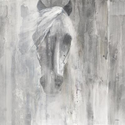 Shadow Gray