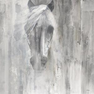 Shadow Gray by Albena Hristova