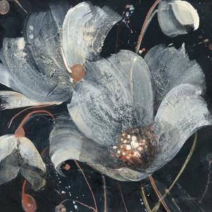 Translucent Poppies by Albena Hristova