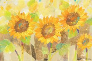 Turn to the Sun by Albena Hristova