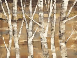 Wandering Through the Birches III by Albena Hristova