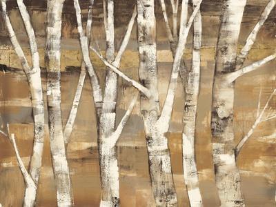 Wandering Through the Birches III
