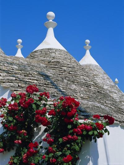 Alberobello, Typical Houses, Apulia (Puglia), Italy-Bruno Morandi-Photographic Print
