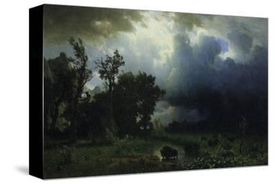 Bison Trail: Approaching Storm
