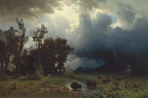 Buffalo Trail: The Impending Storm, 1869 by Albert Bierstadt