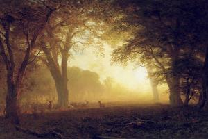 Golden Light of California by Albert Bierstadt