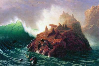 Seal Rock, California