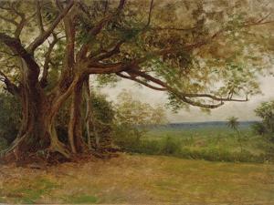 Study for 'The Landing of Columbus', 1892 by Albert Bierstadt
