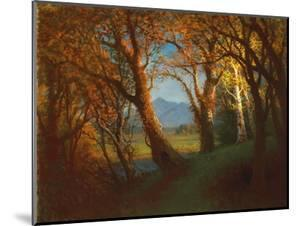 Sunset in the Nebraska Territory by Albert Bierstadt