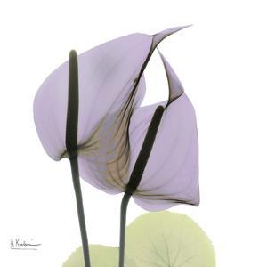 A Gift of Flowers in Lavender by Albert Koetsier