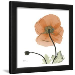 A Gift of Flowers in Orange by Albert Koetsier