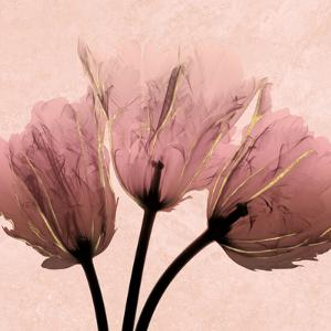 Alizarin Marble Splendor 2 by Albert Koetsier