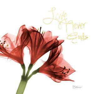 Amaryllis Endless Love by Albert Koetsier