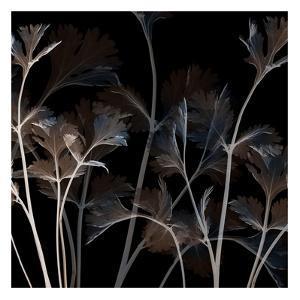 Amethyst Sweetness 1 by Albert Koetsier