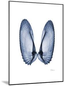 Angel Wings by Albert Koetsier