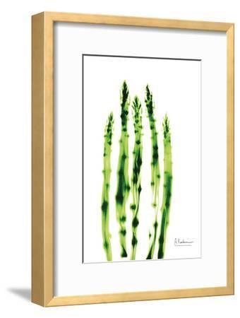 Asparagus Stock