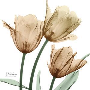 Autumn Tulips 1 by Albert Koetsier