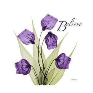 Believe by Albert Koetsier