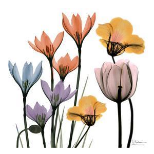 Blissful Garden 1 by Albert Koetsier