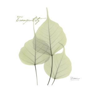 Bo Tree Tranquility by Albert Koetsier