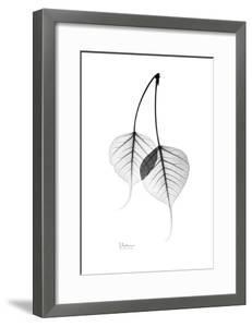 Bodhi Tree Leaves in Black and White by Albert Koetsier